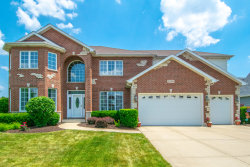 Photo of 25206 N Indian Boundary Court, Plainfield, IL 60544 (MLS # 10755882)