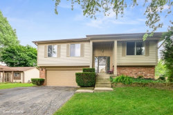 Photo of 1089 Home Place, Bolingbrook, IL 60440 (MLS # 10766350)