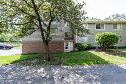 Photo of 39870 N Golf Lane, Unit Number 40, Antioch, IL 60002 (MLS # 10766923)