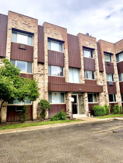 Photo of 8639 W Foster Avenue, Unit Number 2N, Chicago, IL 60656 (MLS # 10767386)