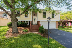 Photo of 700 Middleton Drive, Roselle, IL 60172 (MLS # 10768145)