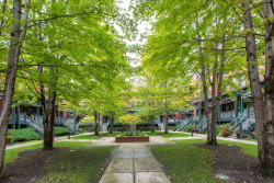 Photo of 1021 W Rundell Place, Unit Number 4, Chicago, IL 60607 (MLS # 10768424)