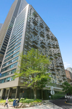 Photo of 1000 N Lake Shore Drive, Unit Number 806, Chicago, IL 60611 (MLS # 10769269)