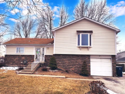 Photo of 51 Wedgewood Road, Matteson, IL 60443 (MLS # 10769319)