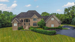 Photo of 3912 Clearwater Drive, Long Grove, IL 60047 (MLS # 10769326)