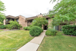 Photo of 1365 N Sterling Avenue, Unit Number 110, Palatine, IL 60067 (MLS # 10770313)
