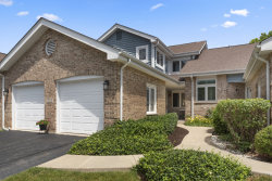 Photo of 11302 Brook Crossing Court, Orland Park, IL 60467 (MLS # 10775123)