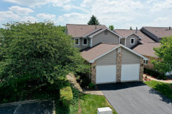 Photo of 11305 Brook Crossing Court, Orland Park, IL 60467 (MLS # 10776371)