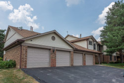 Photo of 4130 N Pheasant Trail Court, Unit Number 3, Arlington Heights, IL 60004 (MLS # 10778012)
