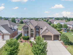 Photo of 10434 Buck Drive, Orland Park, IL 60467 (MLS # 10778313)