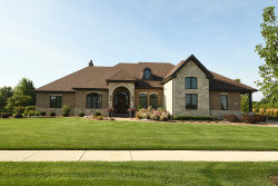 Photo of 11257 Chimay Court, Frankfort, IL 60423 (MLS # 10778836)