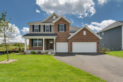 Photo of 24503 W Magnetic Way, Plainfield, IL 60544 (MLS # 10798096)