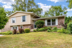 Photo of 314 Plum Street, Lake In The Hills, IL 60156 (MLS # 10801530)