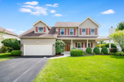 Photo of 13353 Mary Lee Court, Plainfield, IL 60585 (MLS # 10805561)