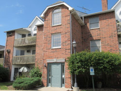 Photo of 1362 Cunat Court, Unit Number 2A, Lake In The Hills, IL 60156 (MLS # 10806087)