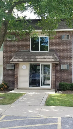 Photo of 1097 Miller Lane, Unit Number 207, Buffalo Grove, IL 60089 (MLS # 10809534)