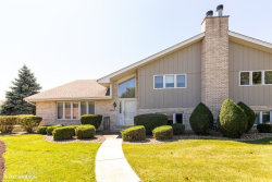 Photo of 18214 Vermont Court, Orland Park, IL 60467 (MLS # 10816422)