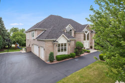 Photo of 10639 Great Egret Drive, Orland Park, IL 60467 (MLS # 10818460)