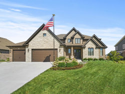 Photo of 21341 Foxtail Drive, Mokena, IL 60448 (MLS # 10835371)