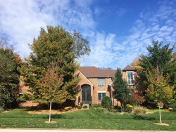 Photo of 11640 Swinford Lane, Mokena, IL 60448 (MLS # 10838675)