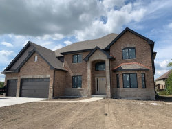 Photo of 8685 High Stone Way, Frankfort, IL 60423 (MLS # 10842764)