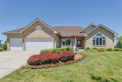 Photo of 8156 Parkview Lane, Frankfort, IL 60423 (MLS # 10848443)