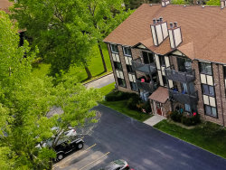 Photo of 259 Stoneybrook Lane, Unit Number 2A, Bloomingdale, IL 60108 (MLS # 10853968)