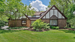Photo of 23W079 Mulberry Lane, Glen Ellyn, IL 60137 (MLS # 10853984)