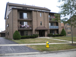 Photo of 7932 Paxton Avenue, Unit Number 3W, Tinley Park, IL 60477 (MLS # 10854729)