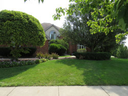 Photo of 20630 Persimmon Court, Frankfort, IL 60423 (MLS # 10855315)