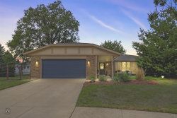 Photo of 8816 Timber Court, Tinley Park, IL 60487 (MLS # 10857960)