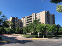 Photo of 4545 W Touhy Avenue, Unit Number 317, Lincolnwood, IL 60712 (MLS # 10858530)