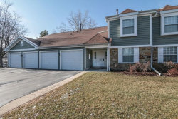Photo of 603 Eastview Court, Unit Number Z1, Schaumburg, IL 60194 (MLS # 10859139)