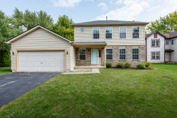 Photo of 13 Henry Court, Fox Lake, IL 60020 (MLS # 10863329)