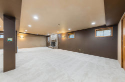 Tiny photo for 1421 Bradley Court, Downers Grove, IL 60516 (MLS # 10863444)