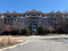 Photo of 15 S Pine Street, Unit Number 203A, Mount Prospect, IL 60056 (MLS # 10876525)