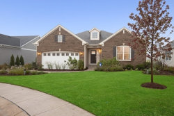 Photo of 9100 Marks Court, Huntley, IL 60142 (MLS # 10876640)