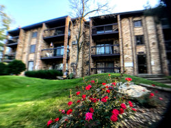 Photo of 15834 Orlan Brook Drive, Unit Number 3W, Orland Park, IL 60462 (MLS # 10879371)