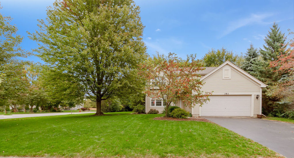 Photo for 393 Geneva Lane, Cary, IL 60013 (MLS # 10892491)