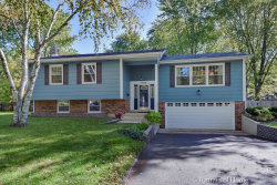 Photo of 1628 Redpoll Court, Naperville, IL 60565 (MLS # 10896516)