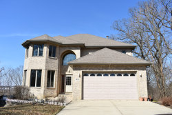 Photo of 1410 Oak Ridge Court, Willow Springs, IL 60480 (MLS # 10896880)