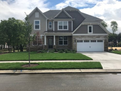 Photo of 3611 Sargent Drive, Naperville, IL 60564 (MLS # 10911147)