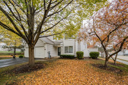 Photo of 481 Betsy Ross Court, Aurora, IL 60504 (MLS # 10917521)