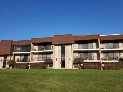 Photo of 15702 Deerfield Court, Unit Number 1S, Orland Park, IL 60462 (MLS # 10918634)