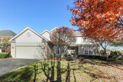 Photo of 1466 Anvil Court, Bartlett, IL 60103 (MLS # 10919738)