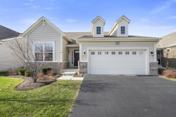 Photo of 2635 Cranbrook Street, Naperville, IL 60564 (MLS # 10933532)