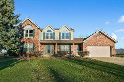 Photo of 2650 Kingsway Avenue, New Lenox, IL 60451 (MLS # 10934229)