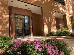 Photo of 899 S Plymouth Court, Unit Number 602, Chicago, IL 60605 (MLS # 10935097)