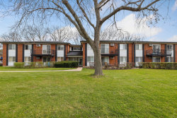 Photo of 2319 E Olive Street, Unit Number 2E, Arlington Heights, IL 60004 (MLS # 10936322)