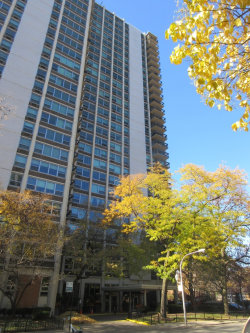 Photo of 1255 N Sandburg Terrace, Unit Number 1204E, Chicago, IL 60610 (MLS # 10936834)